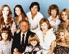 La famiglia Bradford serie tv completa anni 70